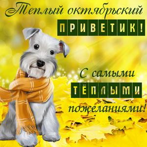 Картинка с собачкой и тёплыми пожеланиями