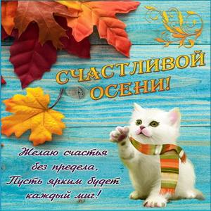 Открытка с котёнком в шарфике желающим счастливой осени