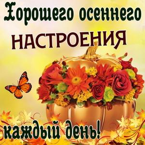 Пожелание хорошего осеннего настроения на милом фоне