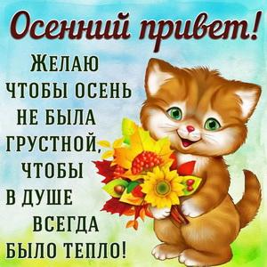 Открытка с котёнком посылающим Вам осенний привет