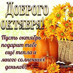 Открытка на октябрь с тыквой и жёлтыми цветами