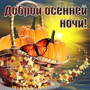 Картинка доброй осенней ночи с бабочкой и тыквами