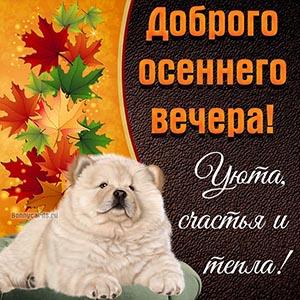 Доброго осеннего вечера, уюта, счастья и тепла