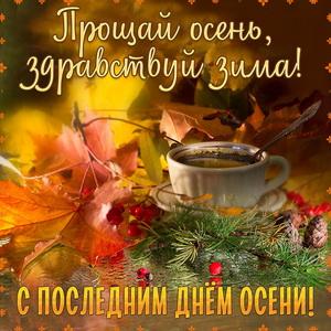 Чашка среди листьев и шишек на последний день осени