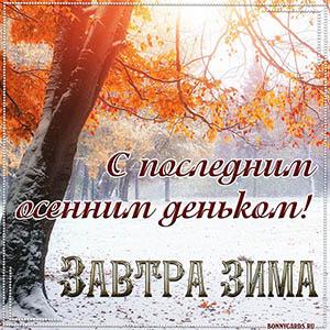 Картинка завтра зима с осенними листьями и снегом