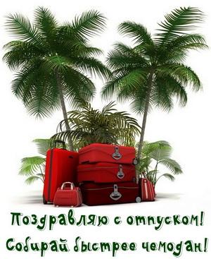 Поздравление с отпуском на фоне пальм
