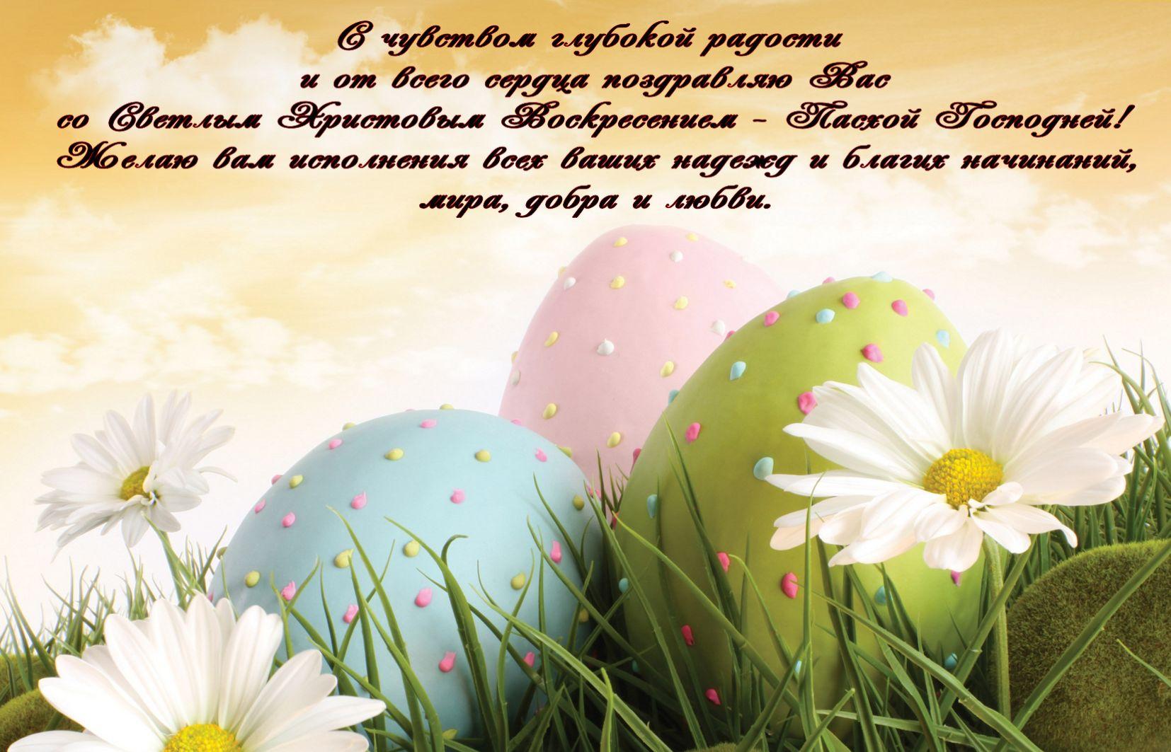 Пожелание на Пасху, ромашки и раскрашенные яйца