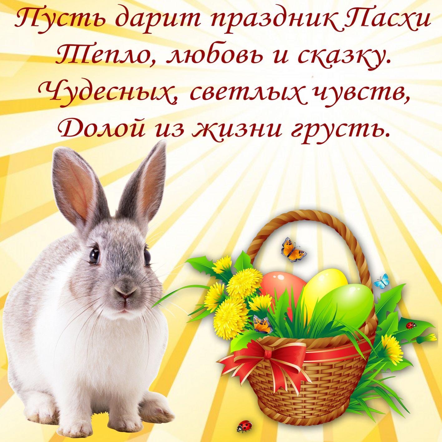 Милый кролик и пожелание на Пасху