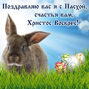 Серый кролик и яички на зеленой травке