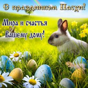 Кролик на травке среди разноцветных яиц