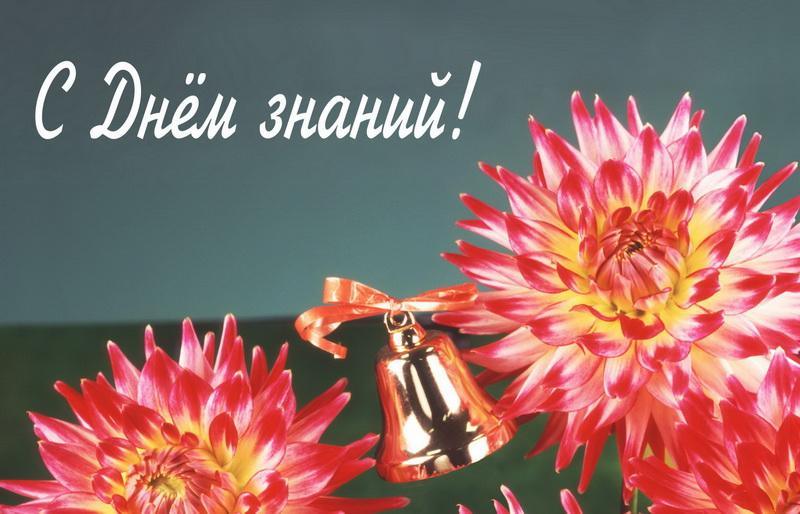 открытка - красные цветы на День знаний