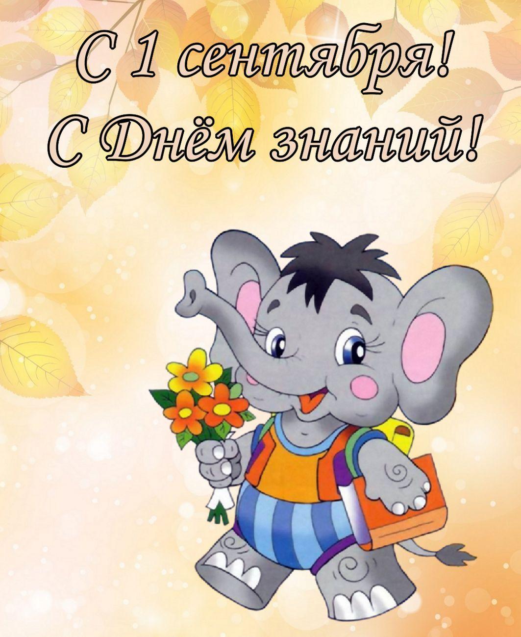 открытка - слоненок поздравляет с 1 сентября