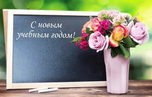 Красивые цветы к новому учебному году.