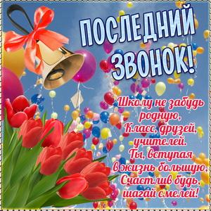 Открытка с тюльпанами к последнему звонку