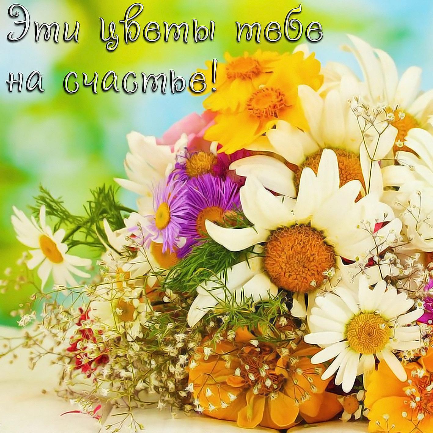 Цветы тебе открытка