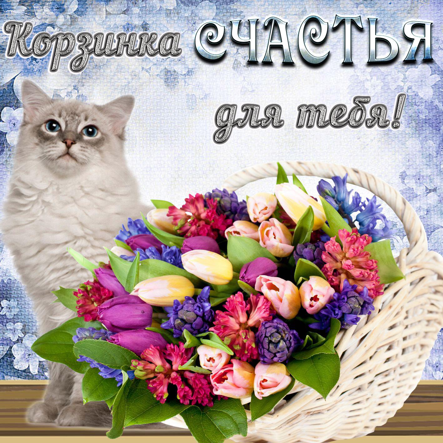 Открытка - котик и корзинка счастья для тебя