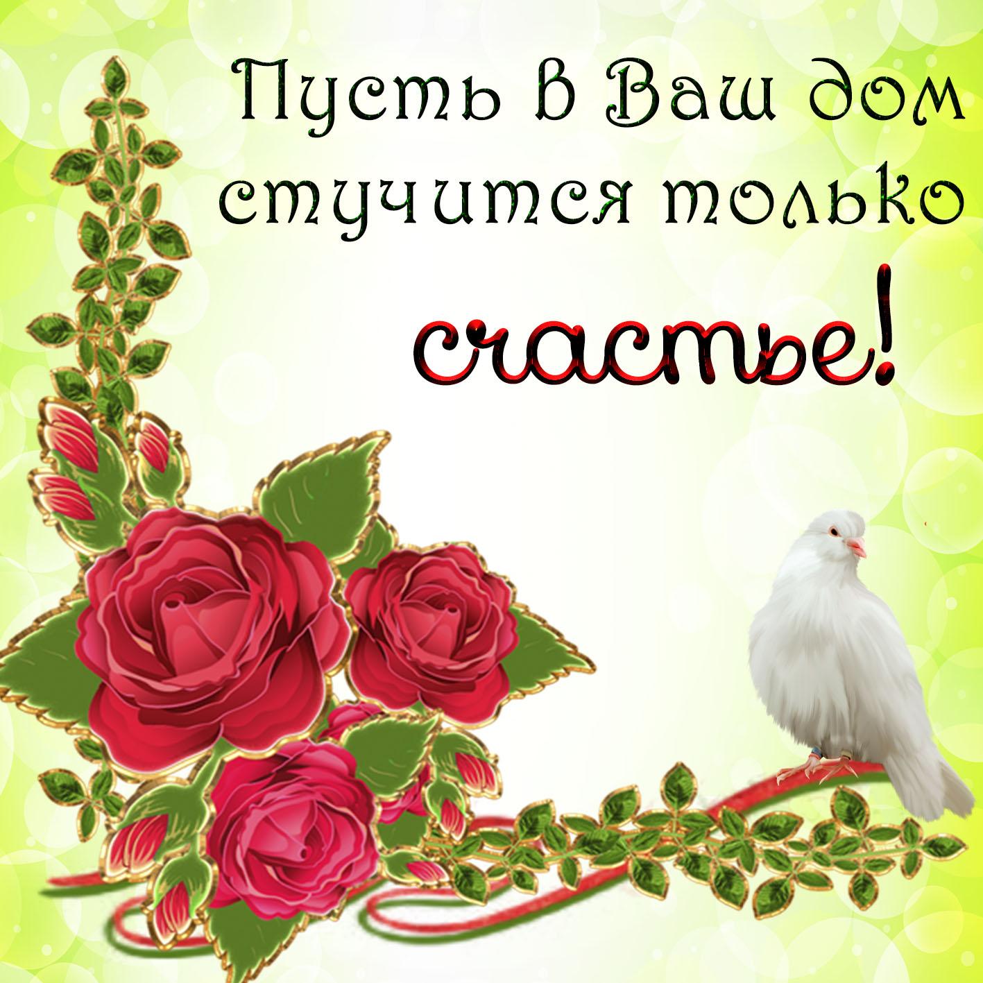 Картинка с пожеланием счастья с голубем и красными розами