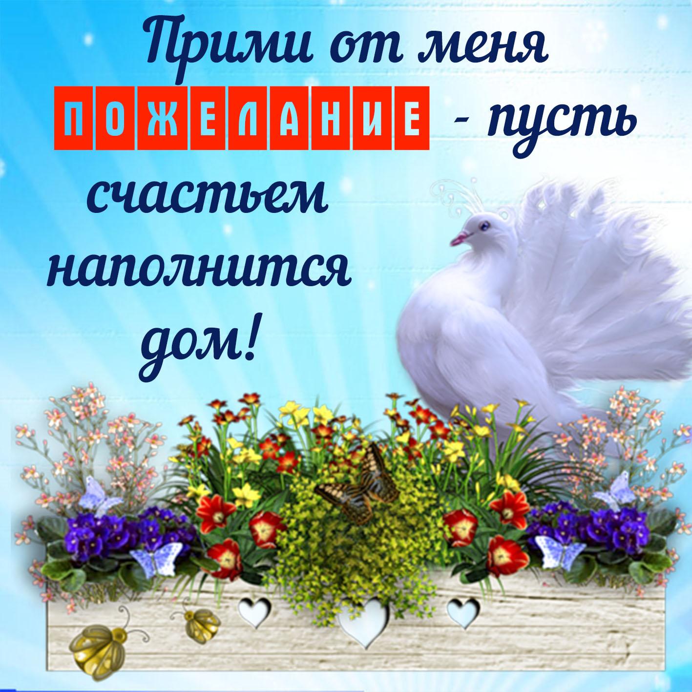 Открытка с пожеланием счастья - белый голубь в красивом оформлении