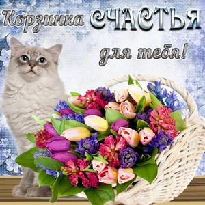 Котик и корзинка счастья для тебя