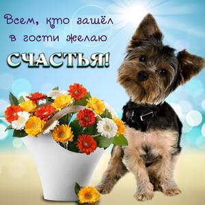 Картинка с собачкой и красивым букетиком