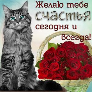 Кошечка и корзина роз на счастье