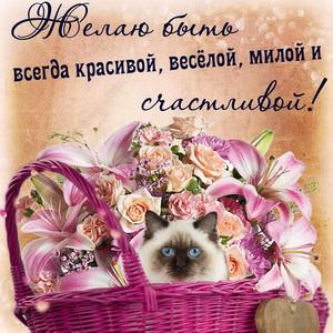 Симпатичный котик в корзинке с цветами