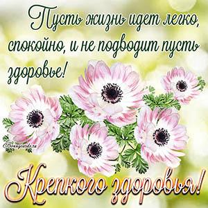 Картинка с пожеланием крепкого здоровья и красивыми цветами
