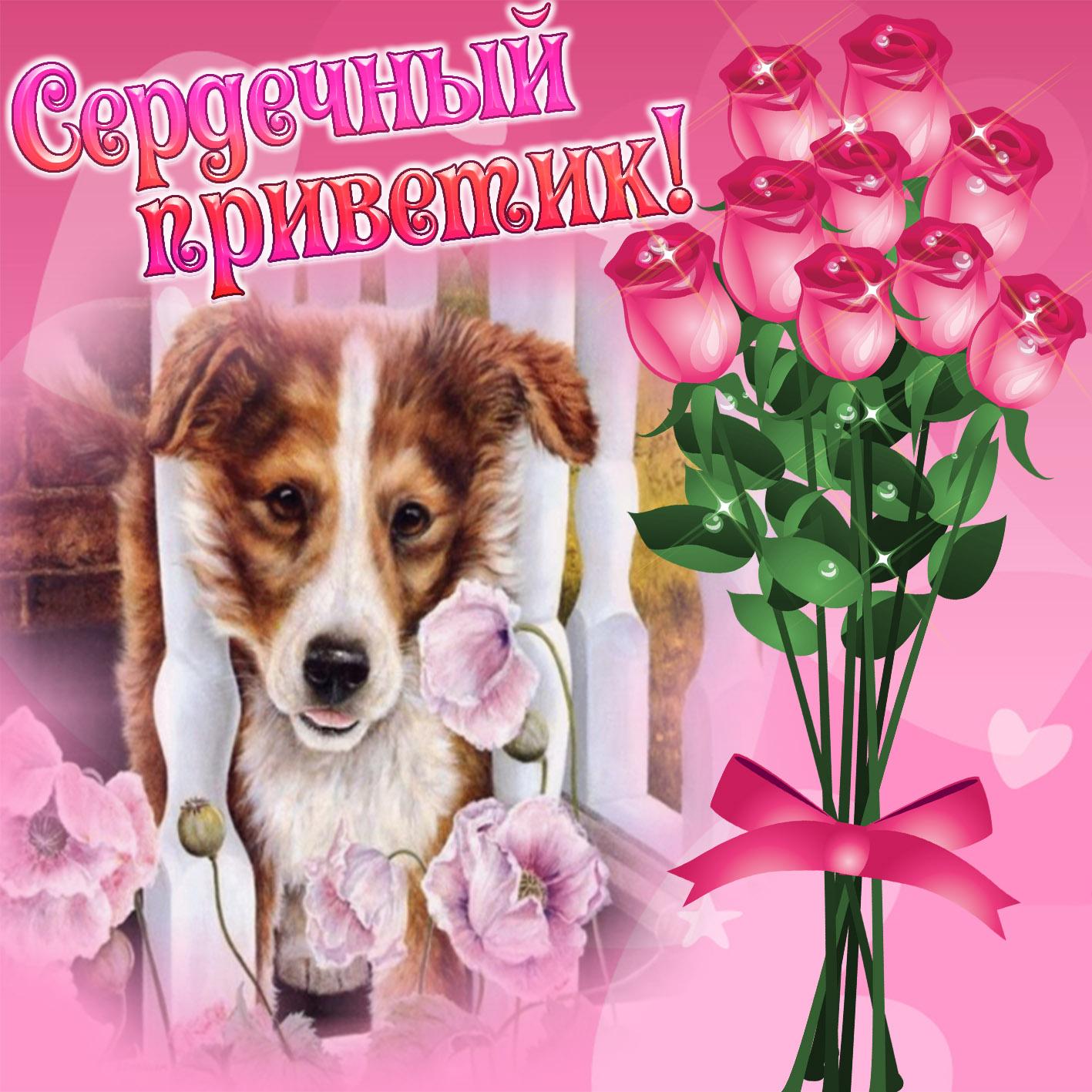 Открытка - собачка шлёт сердечный приветик