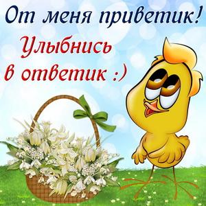 Цыпленок с корзиной цветов