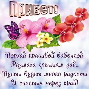 Открытка с красивым цветком и приветом