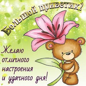 Картинка с медвежонком посылающим приветик