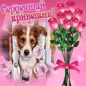 Собачка шлёт сердечный приветик