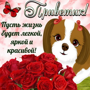 Картинка с букетом и приветом от собачки