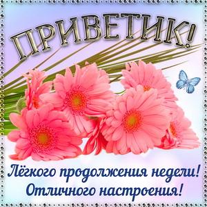 Картинка с яркими цветами и приветиком