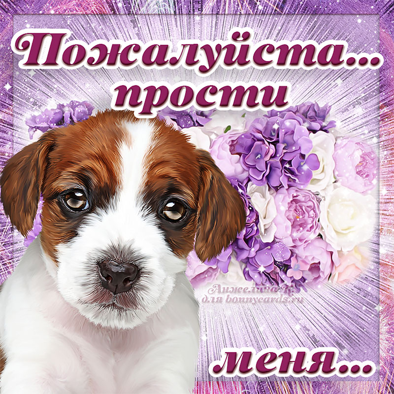 беды сторонке картинки с собаками прости меня пожалуйста можно