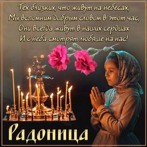 Гвоздики и красивое пожелание на Радоницу