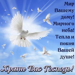 Картинка храни Вас Господь с голубями