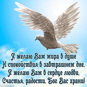 Картинка с голубем в небе и пожеланием мира в душе