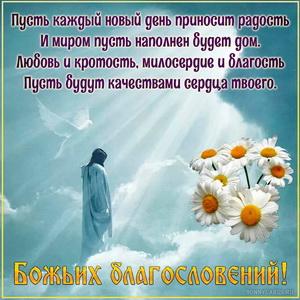 Открытка с красивым пожеланием в небесах и ромашками