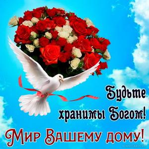 Картинка с голубем и огромным букетом роз в голубом небе