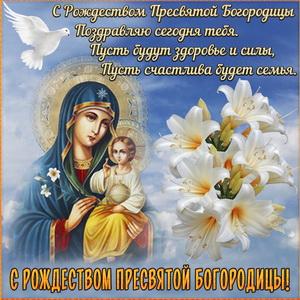 Поздравление и цветы к Рождеству Богородицы