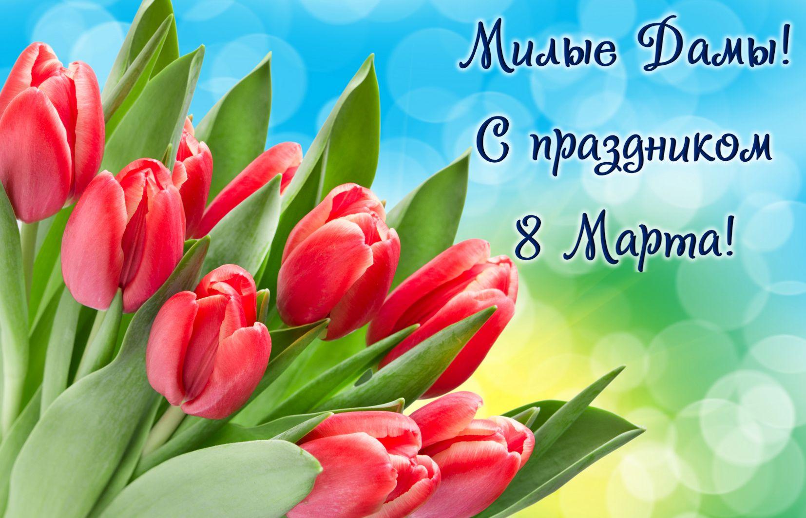 Открытка с 8 марта - красные тюльпаны для милых дам