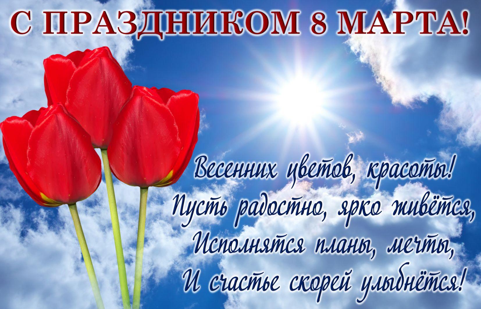Открытка с 8 марта - тюльпаны и пожелание в синем небе