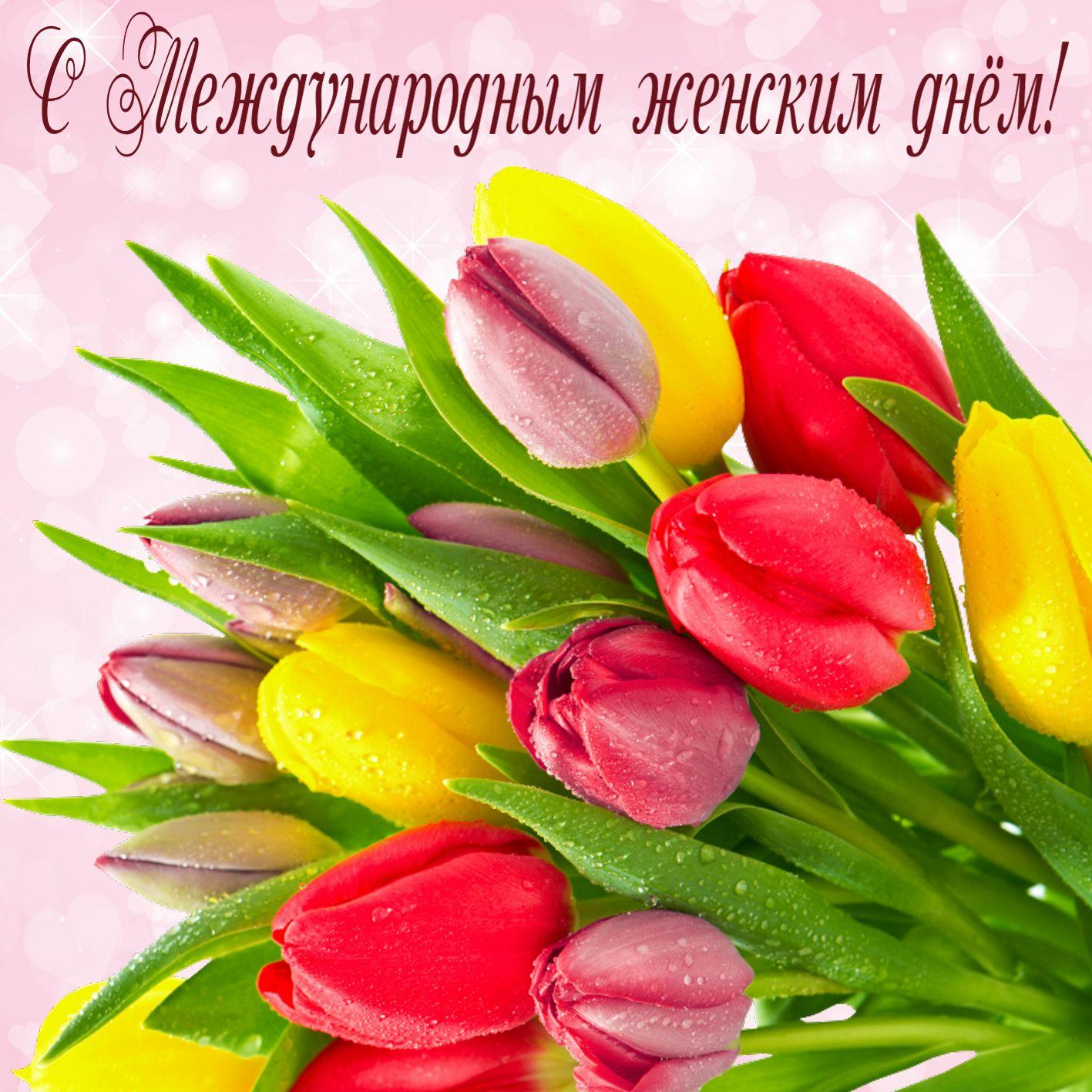 Открытка с 8 марта - букет тюльпанов в капельках росы