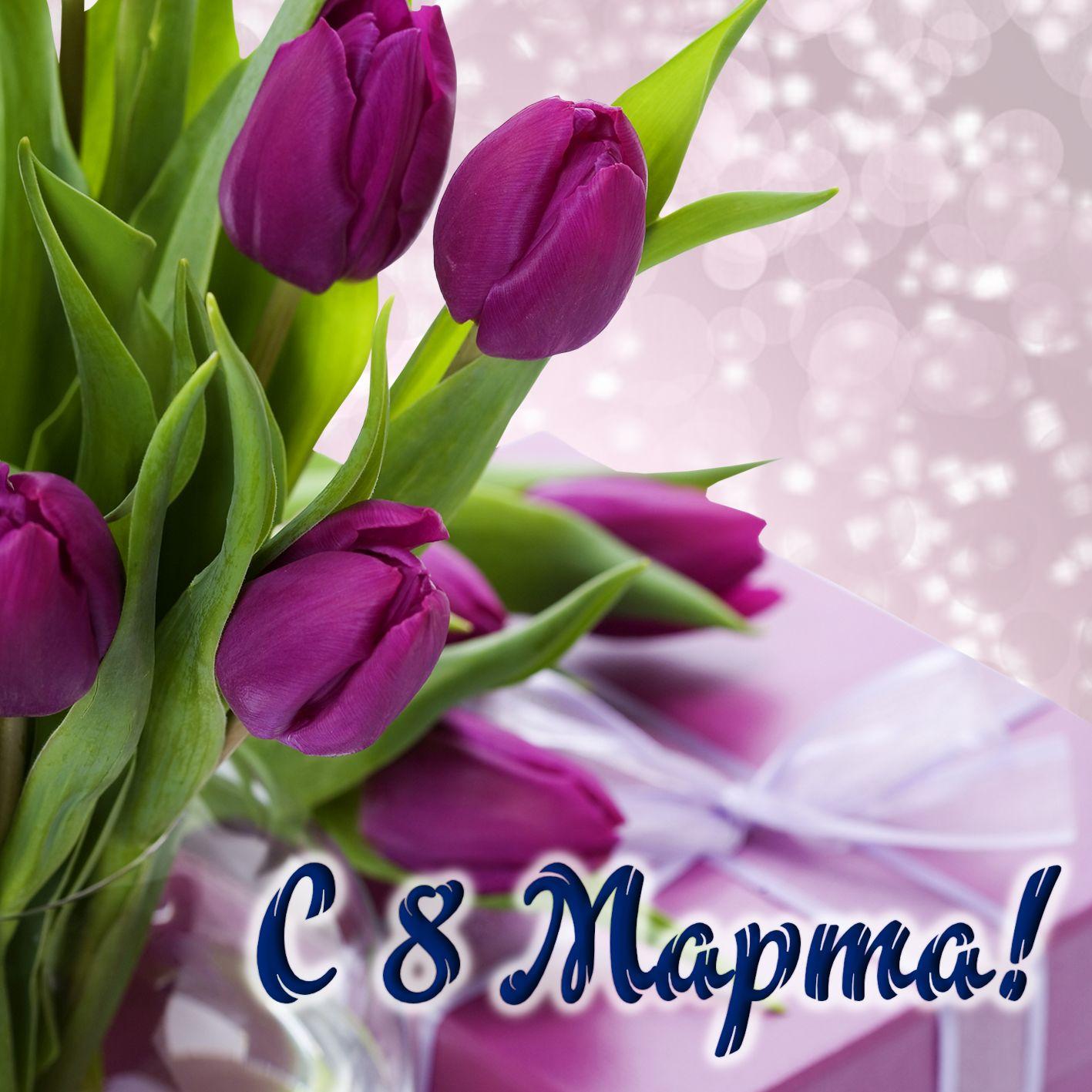 Открытка с 8 марта - фиолетовые тюльпаны на блестящем фоне