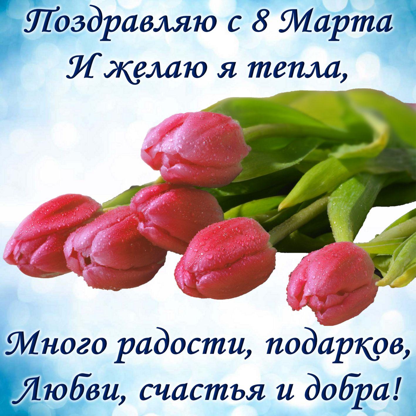 Поздравление и красивые тюльпаны на 8 марта