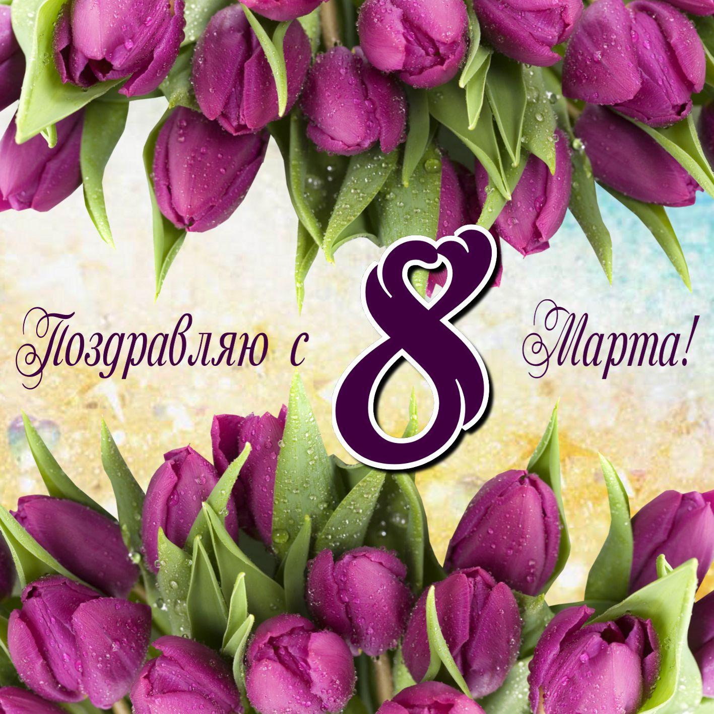Открытка с тюльпанами в капельках росы