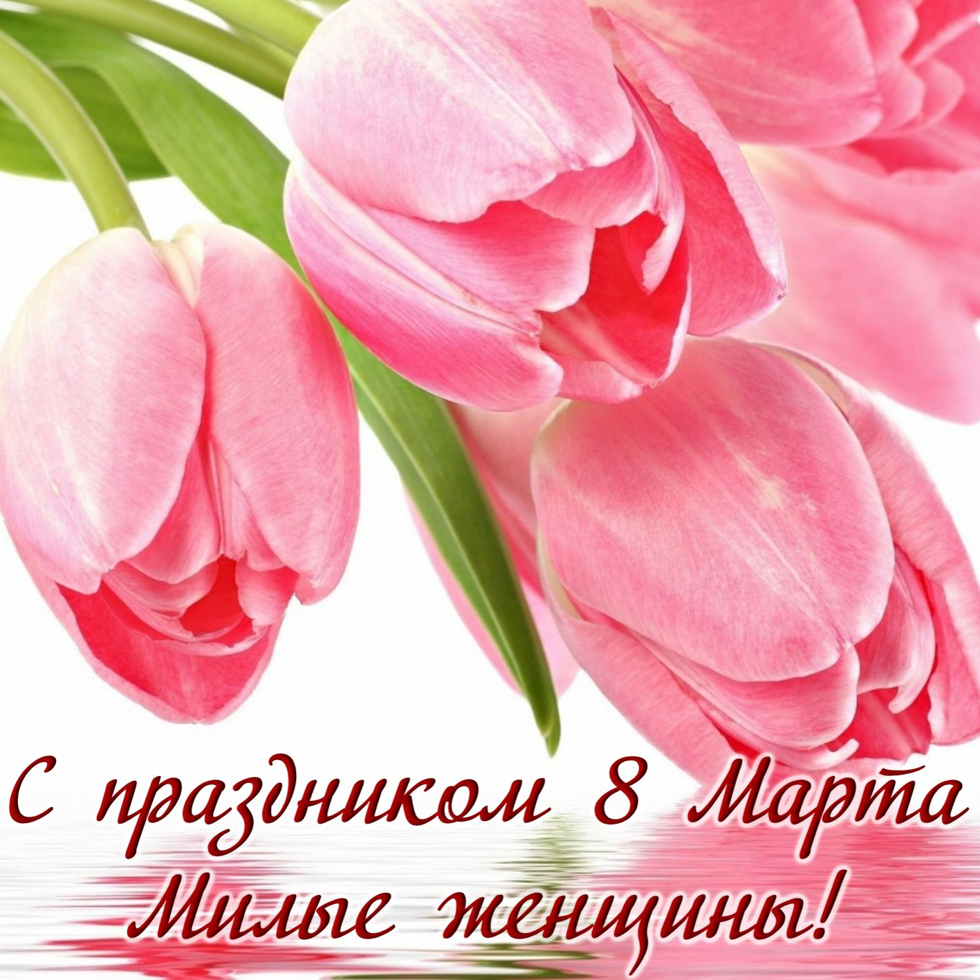 Открытка с 8 марта - розовые тюльпаны для милых женщин