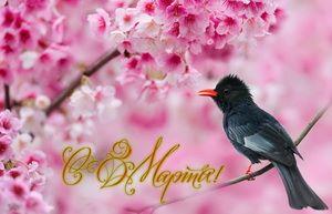 Поздравление, птичка на ветке, цветы