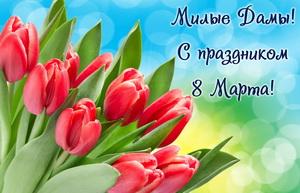 Красные тюльпаны для милых дам